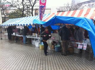 funahori1.jpg